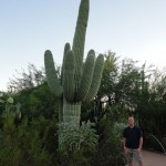 Me with the saguaro cactus